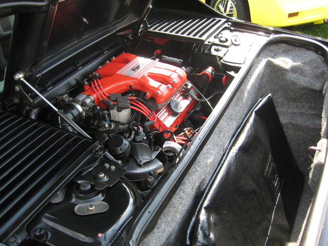 Black Notchie Fiero Engine